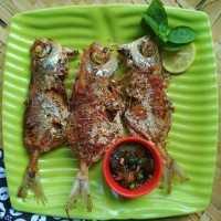 Ikan Lemper Goreng Sambal Kecap