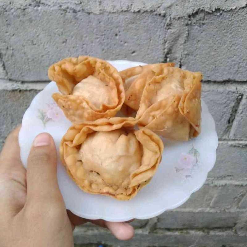 Fried Chicken Dumpling