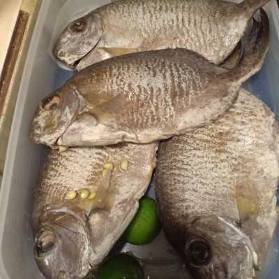 Step 1 Ikan Bakar Jimbaran #JelajahTengah